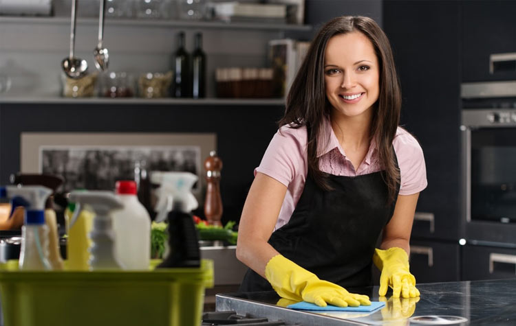 Professional maids in south eastern Michigan